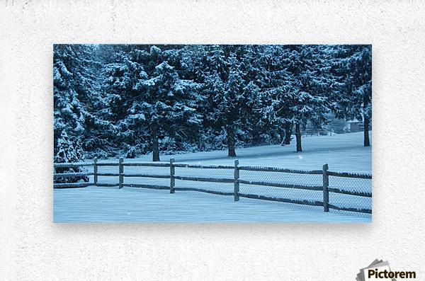 Winter Snow  Metal print