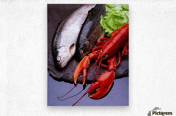 Lobster And Trout  Metal print