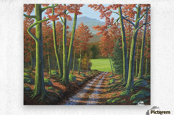 Maple Forest Road  Metal print