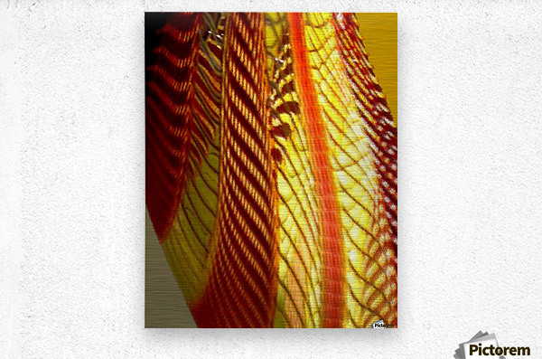 Dragon Wing  Metal print