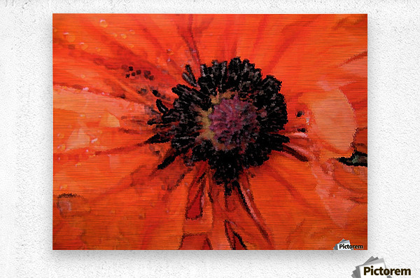 poppies will make you sleep  Metal print