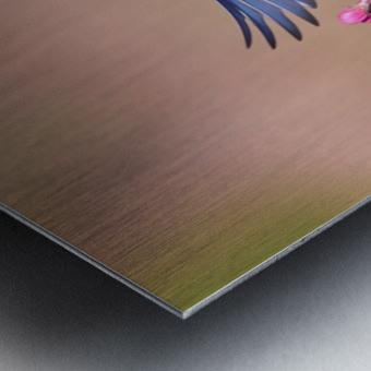Colorful Spring Metal print