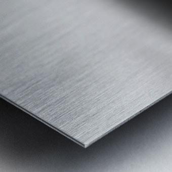 ways of the world Metal print
