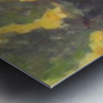 Pasture at dusk Metal print