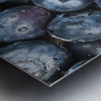 Close up shot of several fresh blueberries. Metal print