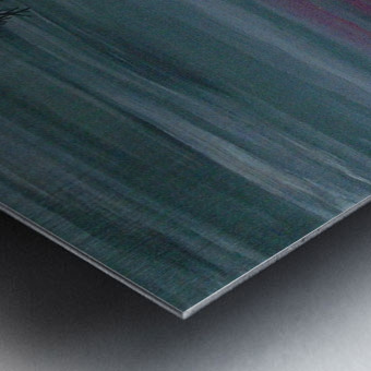 51 x2_51__1 3__view R Metal print