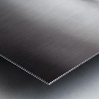 CanmoreWinter Metal print