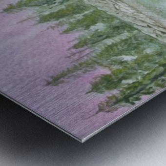 Pine reflections. Metal print
