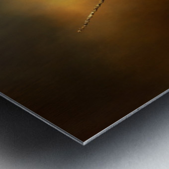 Textured Strix Varia Metal print