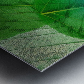 HC0272    Metal print