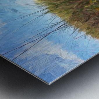 A Trail to the Beach Metal print