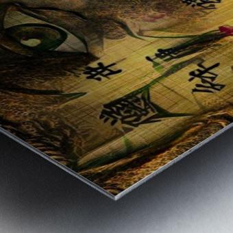 Asia Woman Metal print