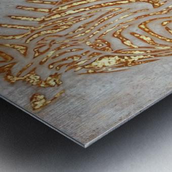 Gold Zebra Metal print