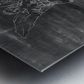 Venus Impression metal