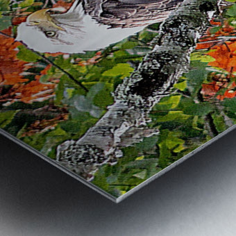 AutumnEagle Metal print