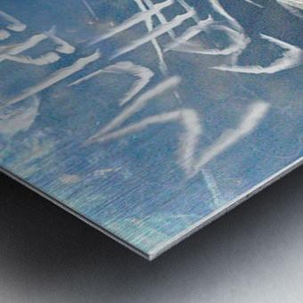 ChemTrails Metal print