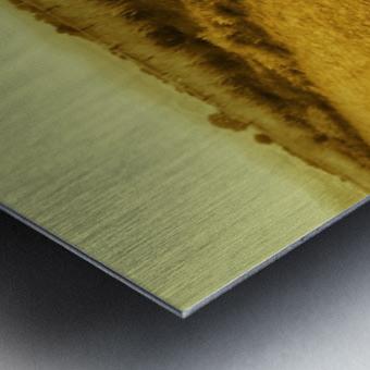 A (3) Metal print
