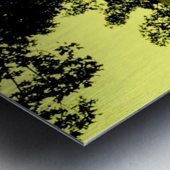 sofn-66E4BA18 Metal print