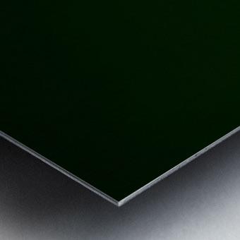 E (4) Impression metal