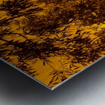 G (12) Metal print