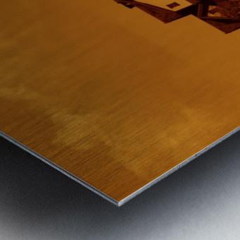 sofn-5D9BE0B7 Metal print