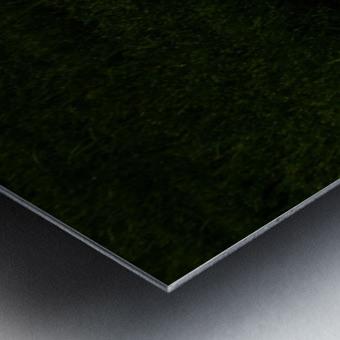 H (11) Metal print