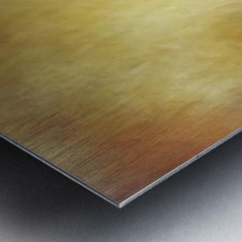Impressions Metal print