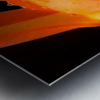 Sweet Orange sweat Impression metal