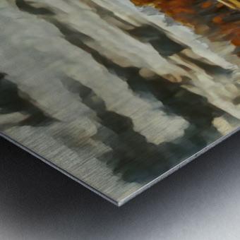 barn um Metal print