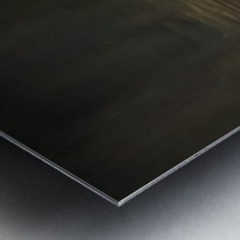 _T8C4044 Metal print