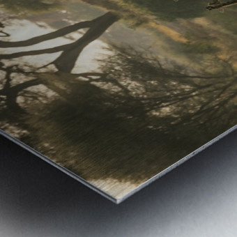 _49R8818 Metal print