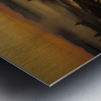 _S9A2665 Metal print