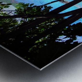 Tropical Waters 1 Metal print