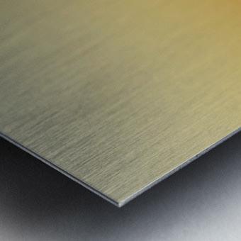 needle Metal print