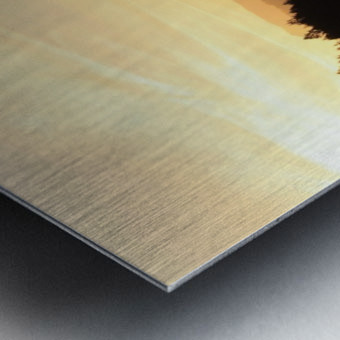 Dewatto glow Metal print