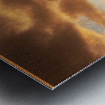 Sour Set Metal print