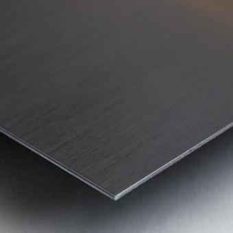 Setting Orb in view Metal print