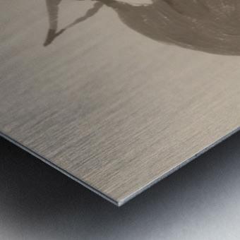 Gray Fox Looking to the Skies Metal print