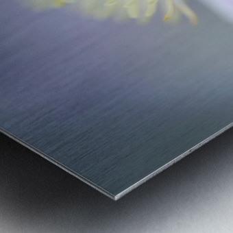 Mayleen Metal print