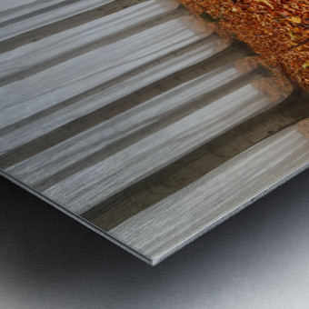 Puddle Metal print