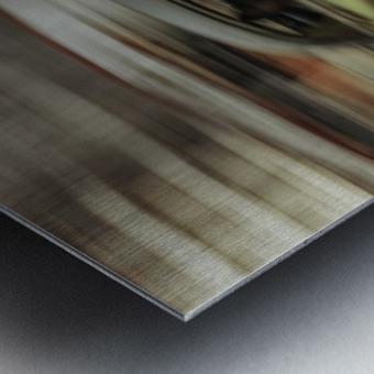 Panning Havana Metal print