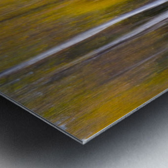 Abstract Fall Metal print