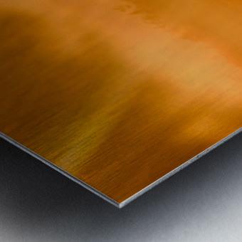 Guard Of Light Metal print