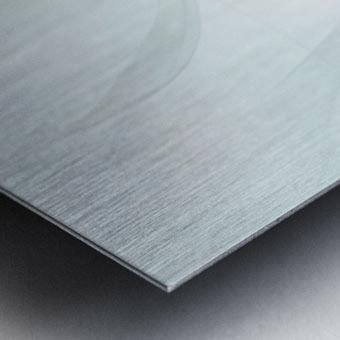Purity Metal print