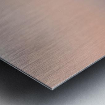 stand up paddling Metal print