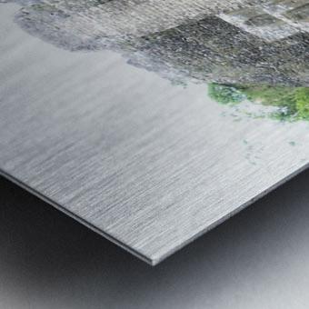 Myan12 Metal print