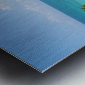 Tropical8 Metal print