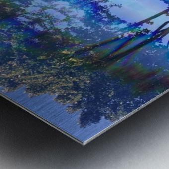 Canopy Gateway Metal print