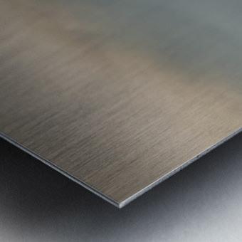 Alberni fog Metal print
