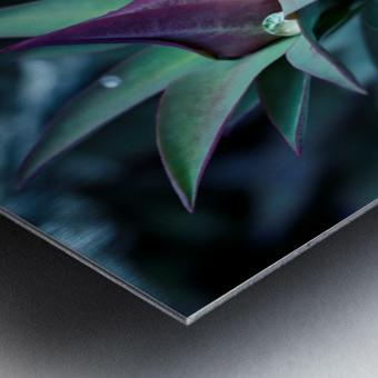 Funky flora Impression metal